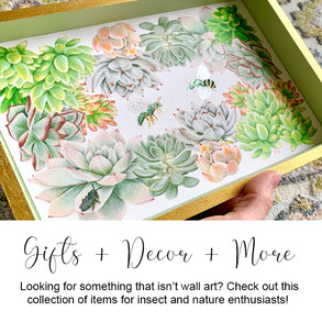 Gifts + Decor + More