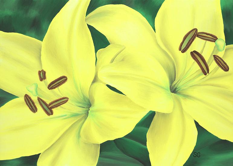 Spring Lilies Print