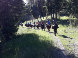 Ranch Trail Ride Going Out