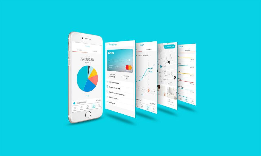 Brim Financial App