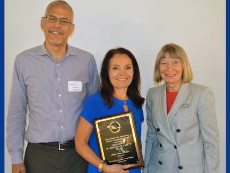 """""""EXCELLENCE IN SAFETY"""" AWARD PRESENTED TO HIGH VIEW REHABILITATION AND NURSING CENTER"""