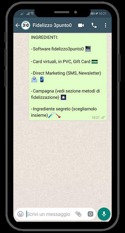 Consulenza e integrazione di WhatsApp Business