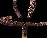 logo-villa-garzoni.png