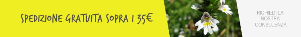 banner_spedizione_gratuita_35€_(1).png