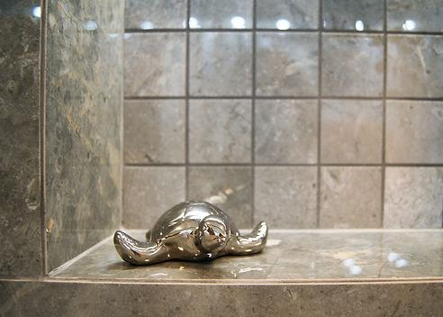 żółwie3.jpg
