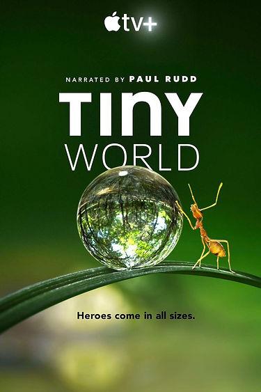 tiny-world.jpg