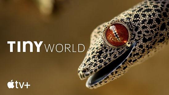 tiny-world_002.jpg