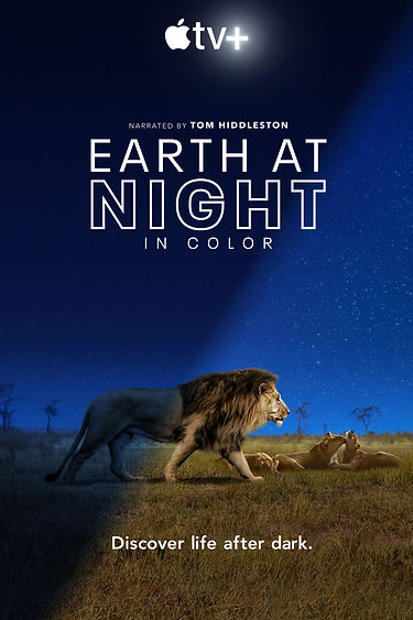 earth-at-night-in-colour.jpg