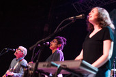 The New Pornographers - Live at the Majestic Theatre in Detroit