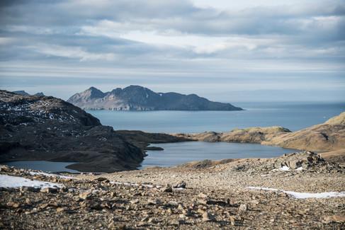 JRF-Grytviken-224.jpg
