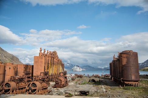 JRF-Grytviken-187.jpg