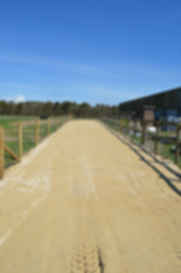 Cattle Track