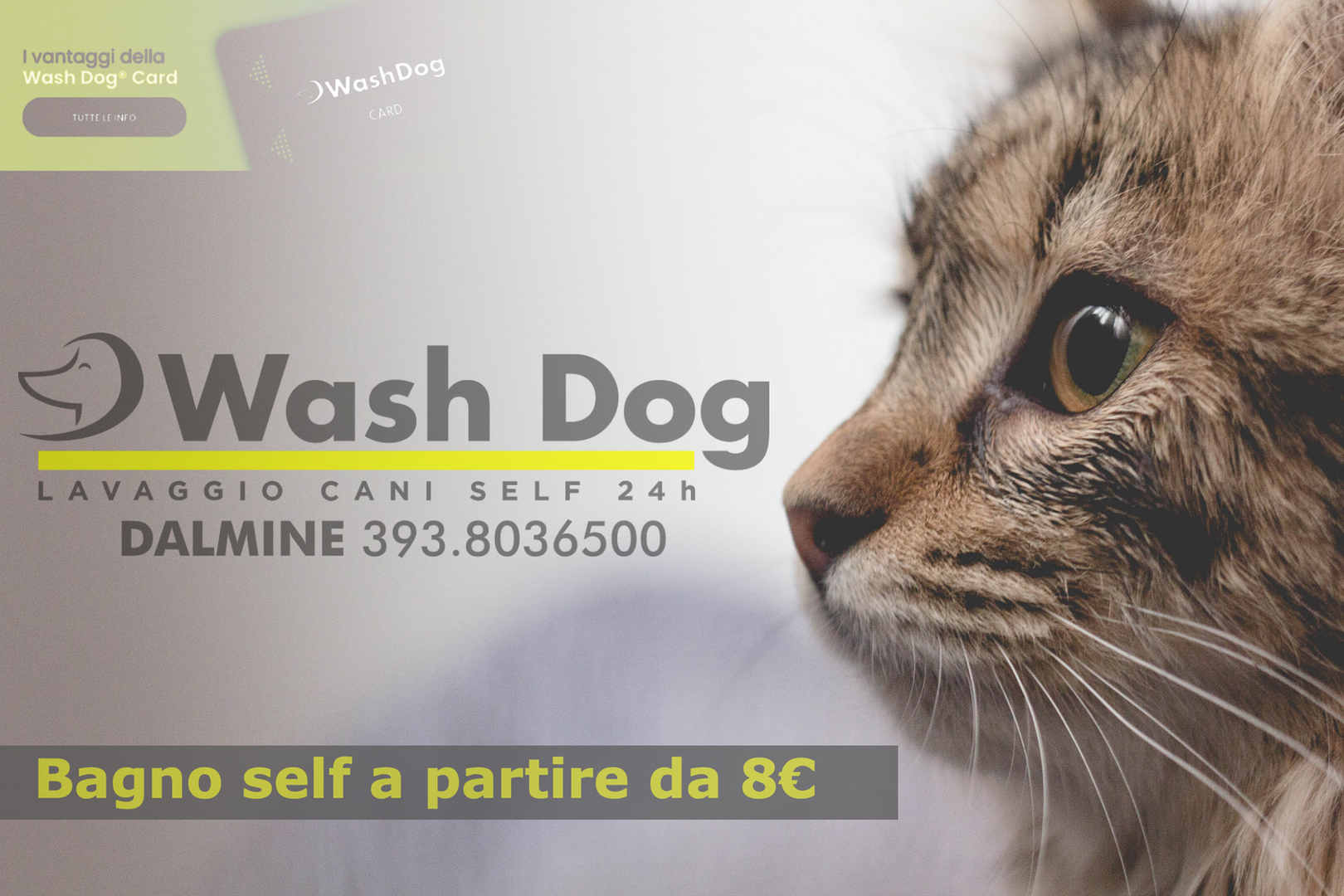 Washdog-Self-Aperto-24h.png
