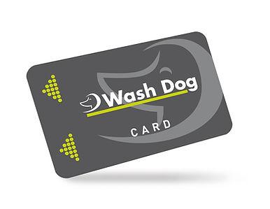 Wash-Dog-Dalmine-tessera24H.jpg