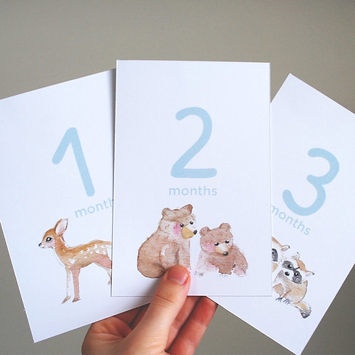 Month Counting Cards