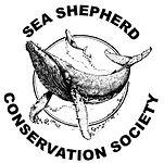 sea_shepherd_seas_ocean_atlantique_surf_