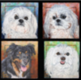 Custom dog portraits of Chloe a Shih Tzu, Maddie, a LlasoAlsoBentley, an Australian CattleDogand Gracie, a Maltese Terrier