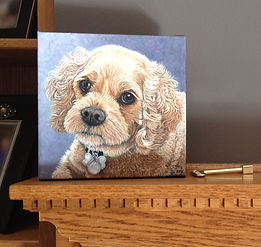 Painted pet portrait Cocker Spaniel