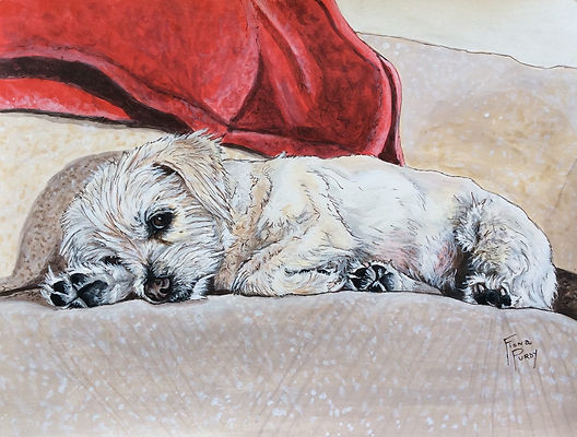 Fine art dog portrait of Abby, a terrier mix, created by pet portrait dog artist Fiona Purdy