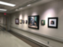 Fiona Purdy pet portrait exhibition at Mayo Clinic Phoenix Hospital