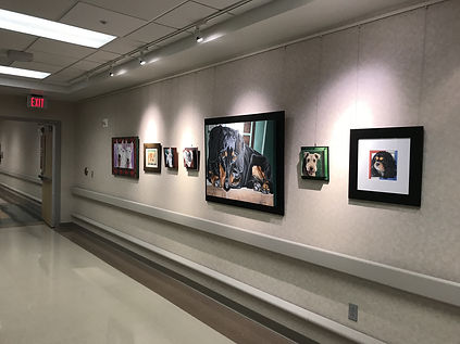 Fiona Purdy pet portrait exhibition at Mayo Clinic Phoenix Hospital