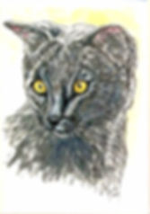 Custom pet portrait painting of Piper a Russian Blue Kitten painted by cat artist Fiona Purdy, Arizona USA