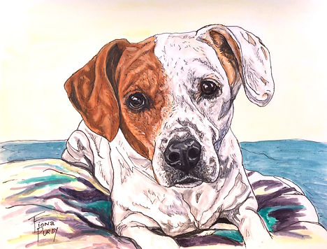 Custom painted dog portrait of Alex, a beagle mix, painted by professional dog artist Fiona Purdy