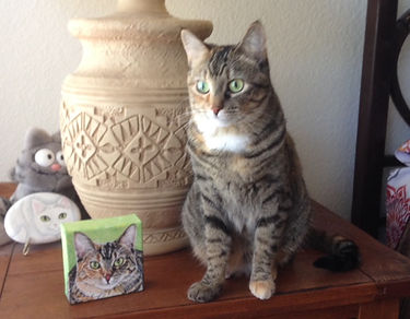 Hand painted pet portrait of Avon, a tabby domestic Shorthair cat.  Cat portraits make a one of a kind gifts for cat lovers.