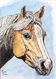 "Custom painted horse portrait of Chance, a palomino quarter horse.  Acrylic & Pen & Ink painting on 5""x 7"" fine art paper by professional horse artist Fiona Purdy"
