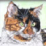 Custom calico cat pet portait