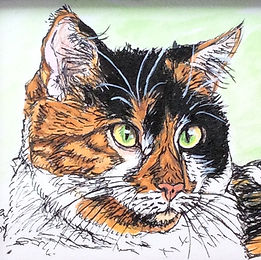 Custom calico cat pet portait