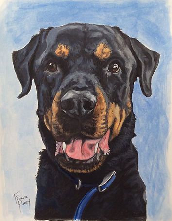 Custom pet portrait in ink and acrylic of Ruger a rottweiler