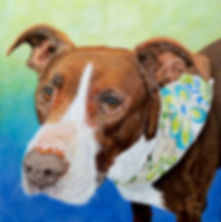 Hand painted pet portrait of Kiha, a Pitbull mix. Dog portraits make a one of a kind gifts for dog lovers.