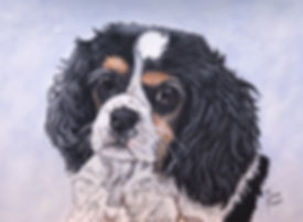 Hand painted pet portrait of a Cavalier King Charles Spaniel