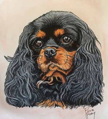 Hand painted pet portrait of Hannah, a Cavalier King Charles Spaniel.  To have a custom fine art portrait painted of your cherished pooch contact Fiona Purdy dog portrait artist