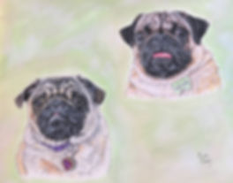 Painted dog portraits of Pearl & Louie, pug dogs by United States pet portrait artist, Fiona Purdy