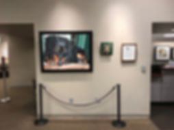 Fiona Purdy pet paintings exhibited at Mayo Clinic Thunderbird Family Medicine Campus