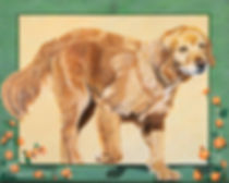 Hand painted dog portrait on canvas in acrylic of Boston, a Golden Retriever. Painted by dog and pet portrait artist Fiona Purdy.