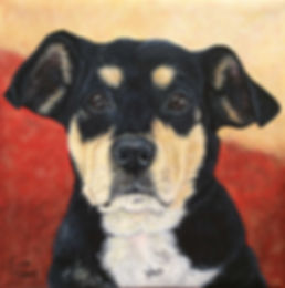 Hand painted dog portrait of Mei Mei, a mixed breed, created by pet portrait dog artist Fiona Purdy