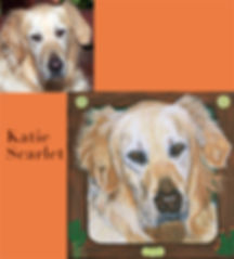 Golden Retriever pet portrait with photo