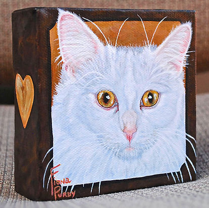 Custom painted cat portrait of Shelby a white long haired domestic cat, painted by catportrait artist Fiona Purdy, USA