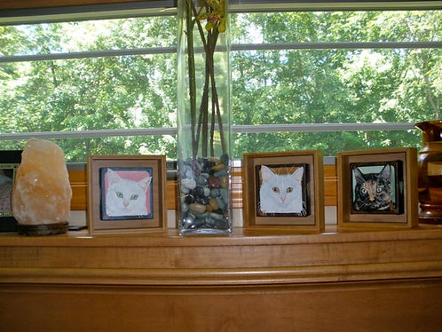 Painted pet portraits of three cats