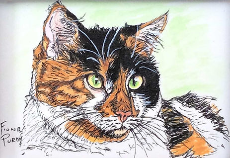 Custom pet portrait of Samantha, a calico cat.