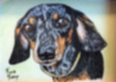 "Custom painted daschund portrait of Sarge, a dappled miniature daschund.  Acrylic & Pen & Ink painting on 2""x 3"" fine art paper by professional dog artist Fiona Purdy"