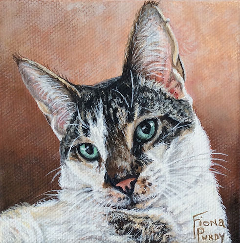 Acrylic on canvas cat portrait of Mr O'Malley, a tabby cat, painted by professional cat portrait artist Fiona Purdy.