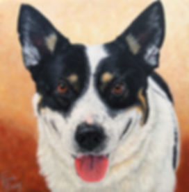 Dog portrait painting of  Spash, an Australian Cattle Dog Mix, painted in acrylic on gallery wrap canvas.