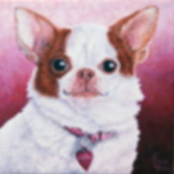 Hand painted pet portrait of Maddie, a Chihuahua. Dog portraits make a one of a kind gifts for dog lovers.