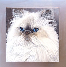 Cat portrait painting of Little Bear a lilac himalyan cat with custom individualized painted frame by Fiona Purdy cat painting artist