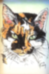 Hand painted pet portrait of Emmylou, a calico cat. To have a custom fine art portrait painted of your cherished feline contact Fiona Purdy cat portrait artist.