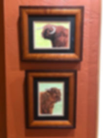 Hand painted portraits of 2 Highland Cattle Bulls